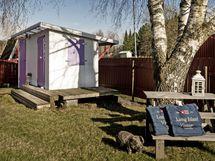 Puutarhassa pieni, näppärä piharakennus kahdella ovella. Pihapiirin kaunis koivu.