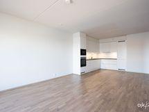 Olohuone/keittiö/ruokailutila