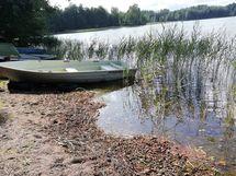 Puujärvi