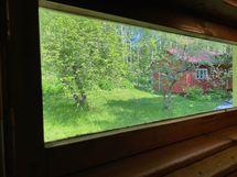 Näkymää saunan ikkunalta pihalle.