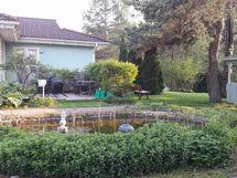 Myyjän kesäkuvia puutarhasta