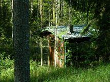 sauna(remontoitava)