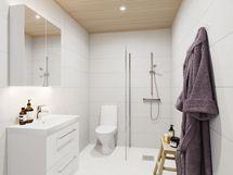 Viitteellinen taiteilijan näkemys kylpyhuoneesta (peilikuva).
