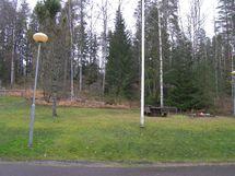 sisäänkäynnin puisto