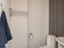 Pihasaunan wc
