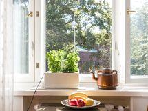 Keittiöstä vehreät näkymät