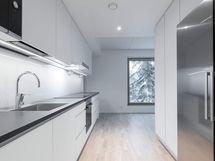 Valokuva asunnon C55 keittiöstä