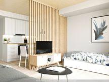 Havainnekuva asunnosta A 16, 31,5m2, taiteilijan näkemys