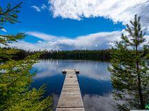 Pitkä laituri ja n. 30 m Onkijärven rantaviivaa