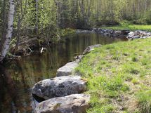 oma puro tontin laidassa